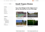 inuit-types-alternate-color-schemes